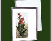 Blank Fine Art Note Cards Assortment 2