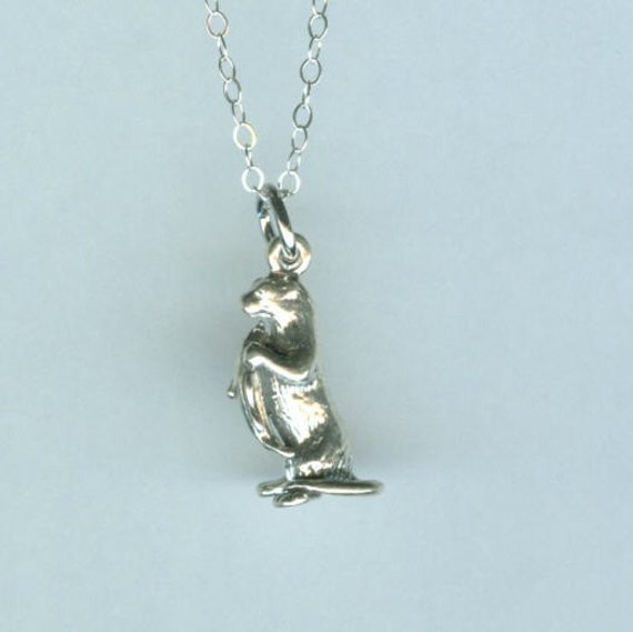 Sterling 3D OTTER with Fish Pendant AND Chain