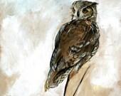 owl on white print