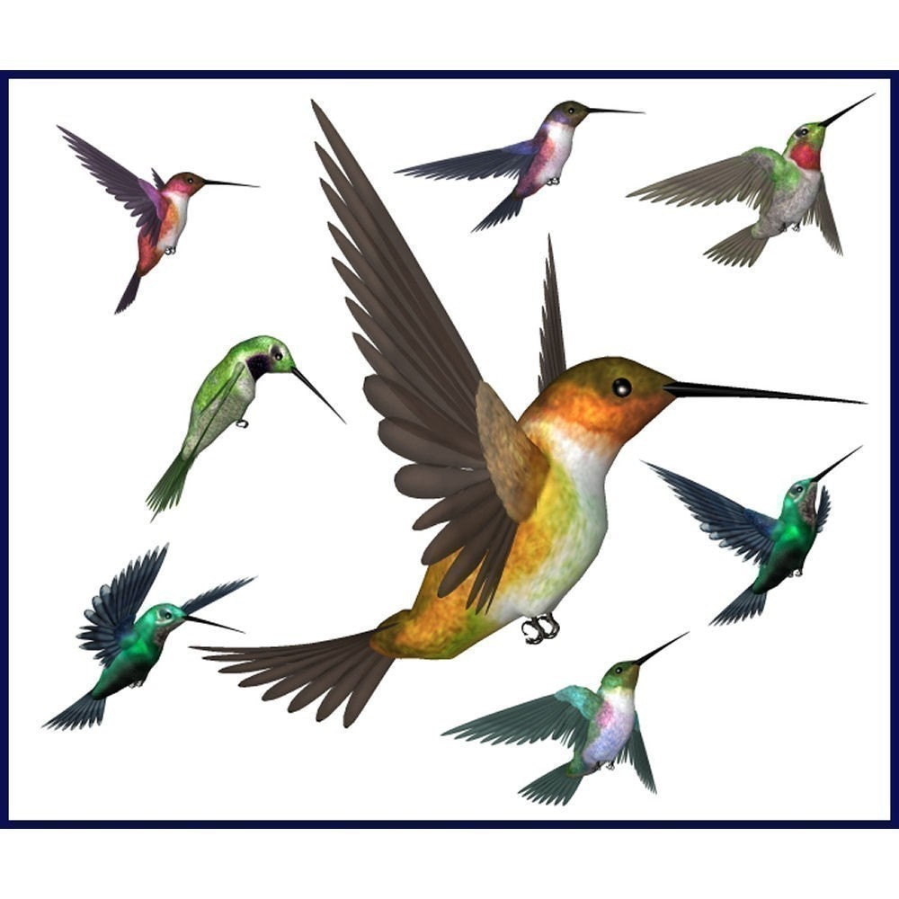 Clip Art Hummingbird Clip Art hummingbird clip art etsy graphics collection 56 royalty free images