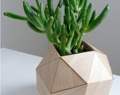 Wooden Geometric Vase, Modern Table Top, Polyhedron Design