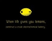 When life gives you lemons - Science - Geek - Funny - T shirt - 2XL 3XL 4XL 5XL