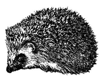 Hedgehog - Unisex T Shirt - S or L