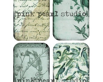 Aqua and Green Background 4 AGeD GRuNGe BiRDs BaCKGRouND PaPeRs DiGiTaL CoLLaGe sHeeT aLTeReD JouRNaL SCRaPBooKiNg SuPPLieS  nO.100