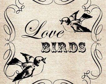 Love Birds Valentines Day DiGItal ImaGe TranSFer for BurlAp PilLows ShabBy GrUnGy ScRapBookInG