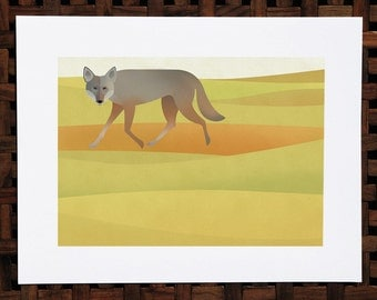 Coyote in the golden hills