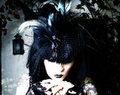 black feather fascinator hat birdcage veil- Nevermore Gothic Exotic Taxidermy Avian Bird Hat in Black with Veil