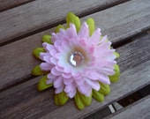 Water Lily Blossom pink and green flower clip