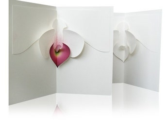 Blossom and Kisses Kirigami Pop-up Cards, Make Yourself (24 patterns included)