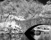 Central Park Bridge in New York - 8x12 Fine Art Infrared Photograph