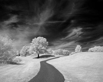 Over the Hill - 8x12 Fine Art Infrared Photograph