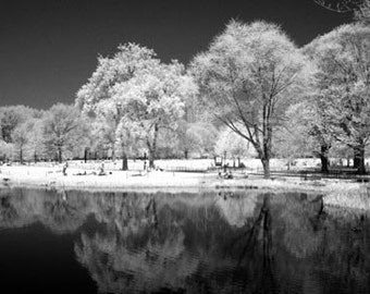 Turtle Pond in Central Park New York - 8x12 Fine Art Infrared Photograph
