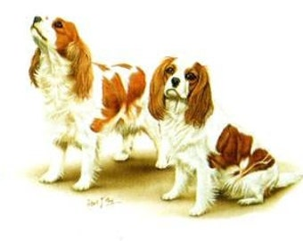 CAVALIER King Charles Dogs in Blenheim Color on TWELVE Identical 6 inch Fabric Squares for Quilt & Sew .White background.