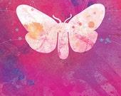 Moth Art - Giella - Butterflies and Moths Series - 8x10