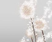 Dandelion Art Print - Perennial Moment (silver) - 8x10 - Modern Flower art - papermoth