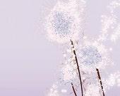Perennial Moment (lavender) - 8x10