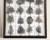 Papercuts-cutouts-handcuts-trees trees trees..all about trees,