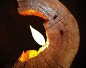 Broken Log Light - Ready to ship