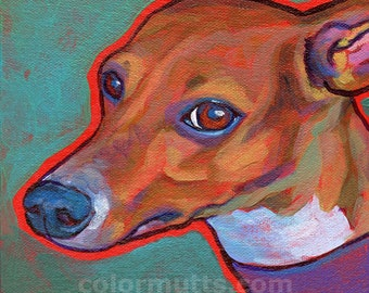 ITALIAN GREYHOUND Dog Art Original Painting 6x6 Canvas by Lynn Culp