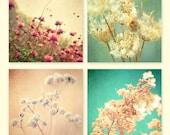 Flower Photography. Floral Prints, home decor, wall art, wall decor, print set, nature photos, garden print, botanical photos 4 photographs