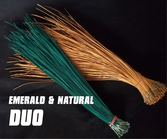 Florida Long Leaf Pine Needles for Basket Weaving or Crafts - Duo - Color - EMERALD and NATURAL