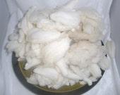 TARGHEE  MERINO Wool Locks  Washed 4 ounces
