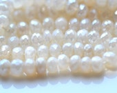 Pearly WHite Chalcedony Faceted ROndelle Beads   10