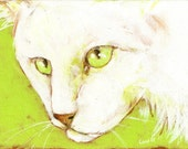 White Cat on Lime  Original OOAK Painting on 6 X 8  Canvas Board Carole Chapla