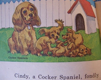 1976 my little book of dogs