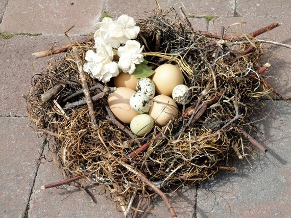 Oversized Bird Nest From Natures Textiles Large Big Faux Nest Made by Nature Herself  for Home Decor made from Beach Grass and Twigs Nest