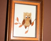 Vintage Shadowbox Framed Owl