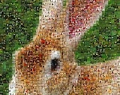 Bunny Rabbit mosaic montage 8 x 10 art print, limited edition