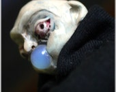 OOAK Uncle Fester art doll hand sculpted and sewn by artist Sherry Westfall Matthews