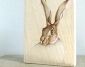 portrait of a hare - original woodburning art