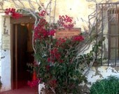 Card - Blank inside, Carmel Mission, Gift Shop Entrance