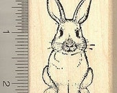 Sitting up Rabbit rubber stamp H4804 wood mounted