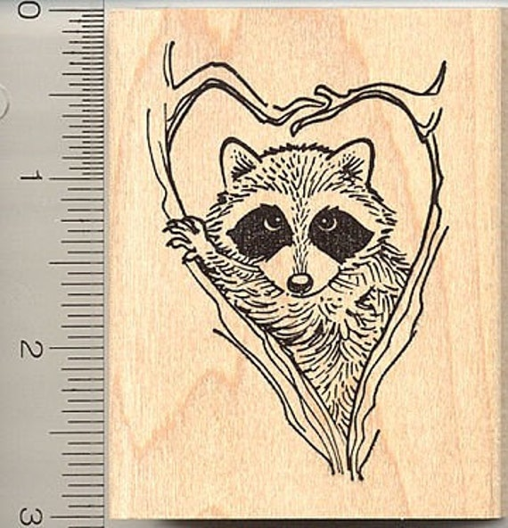 Raccoon in heart rubber stamp J8904 Wood Mounted