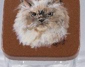 Custom Cat Treat Jar, handpainted pet treat jar, custom , pet treat jar, glass jar, portrait of pet on pet treat jar, Himalayan