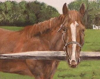 Pet Portrait, horse, dog, cat portrait, pet memorial portrait, hand-made hardwood frame, acrylic portrait on wood