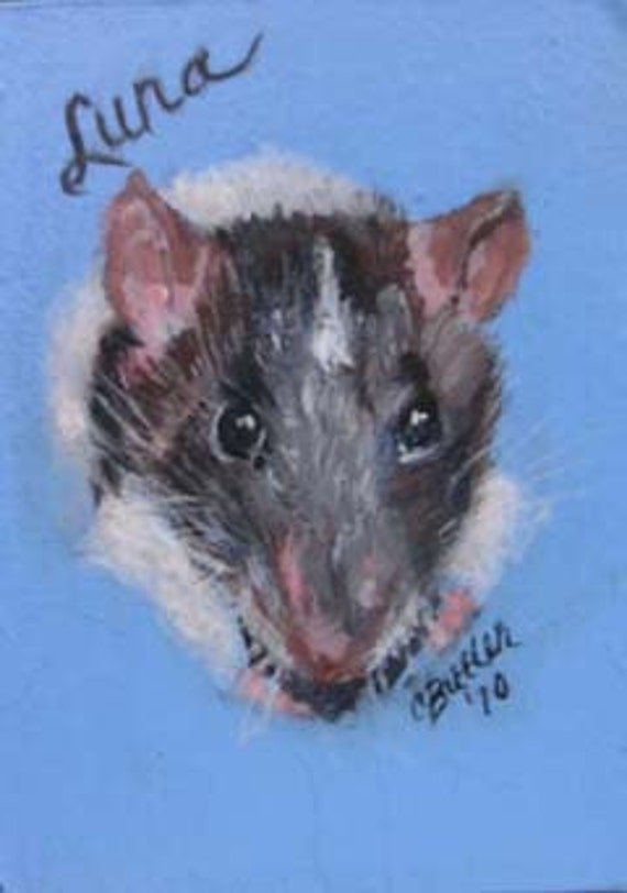 Rat, Custom ACEO, ACEO magnet,small rat painting, pet rat painting, custom pet rat painting,art trading card,collectible art,small art,