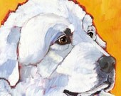 Great Pyrenees No. 1- magnets, coasters and art prints