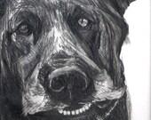 Shelter Dog Series: Bentl...