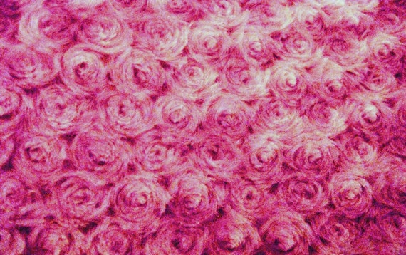 Rose Swirl Minky in Hot Pink