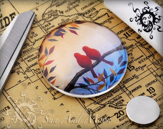 100 30mm Glass Domes Cabochons - 30GD
