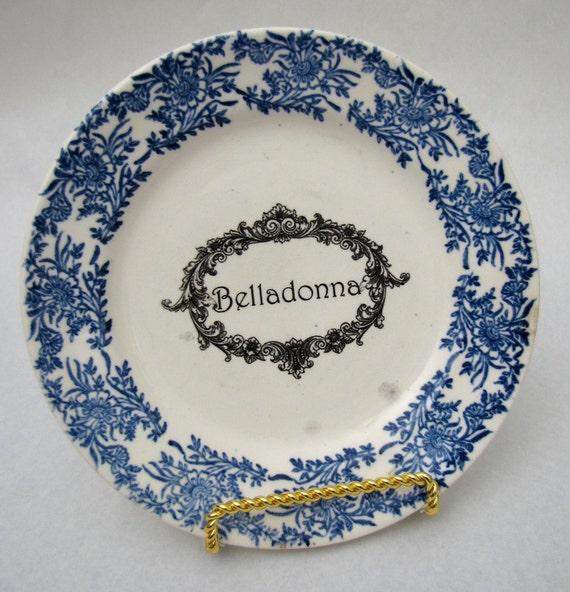 Vintage Belladonna Poison Plate Flow Blue Belladonna apothecary label Dark Shadows