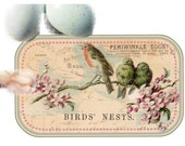 Bird Tags Nest Branch Lavender Shabby Springtime Pale Pink Robins Egg Blue