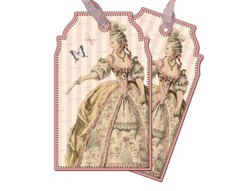 Marie Antoinette Gift Tags, Paris Gift Tag, Cottage Chic Gift Tag, Bridal Shower Tag, Paris Gift Tags, French Wedding Paris Pink Butterflies
