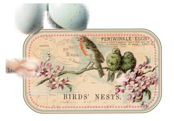 Bird Tags Nest Branch Lavender Shabby Springtime Pale Pink Robins Egg Blue