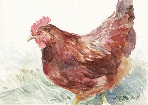 Red Hen Original 5 X 7 Watercolor Painting