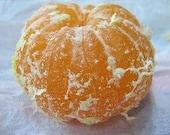 NEW Vegan Lip Lover - Gluten Free Organic, Healing Lip Butter Balm scented w/ Coconut Oil -Natural SPF - Tangerine Dreams
